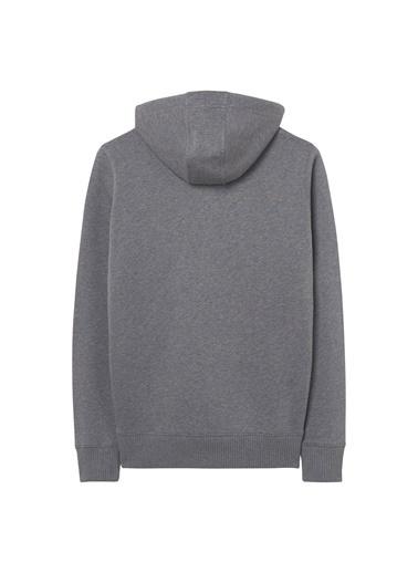 Gant Sweatshirt Gri